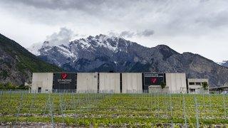 Les caves du groupe Schenk en mutation vont prendre moins de raisin en Valais