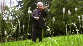 Tibor Varga aurait eu 100 ans, son héritage est bien vivant