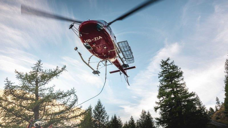 Mission hors du commun pour Air Zermatt qui a dû héliporter 10 vaches accidentées sur les hauts de Geschinen.