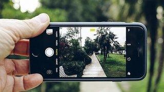 Atelier photo en nature 2.0