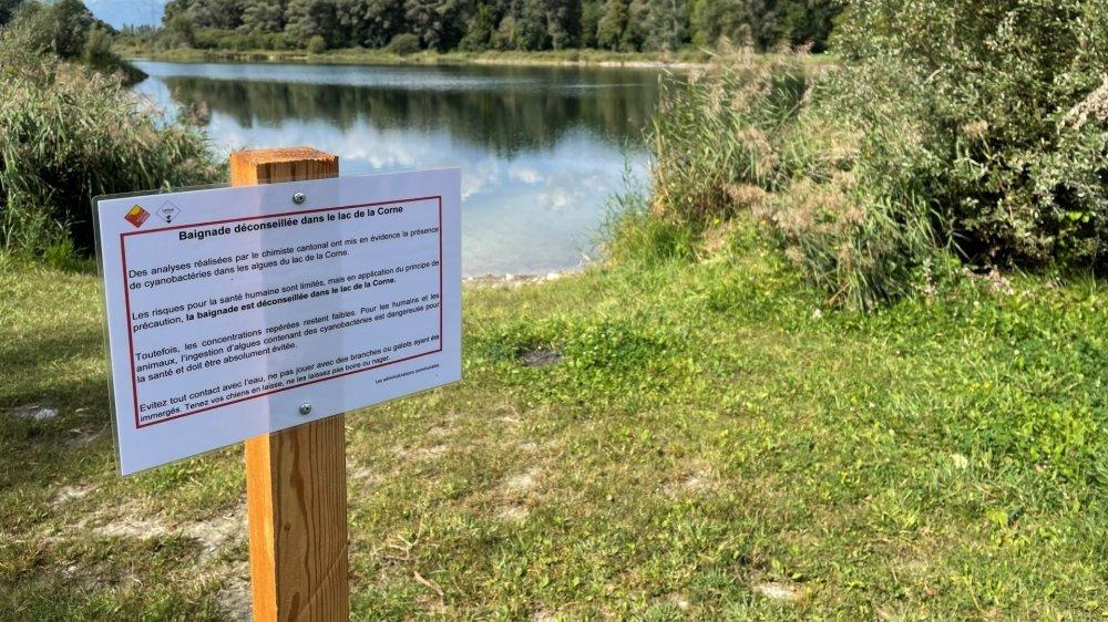 Le lac de la Corne à Sierre, où la baignade est interdite jusqu'à nouvel avis.