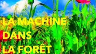 LA MACHINE DANS LA FORET