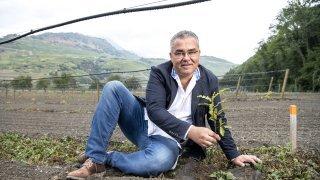 Sion: il crée la première truffière valaisanne qui mesure un hectare