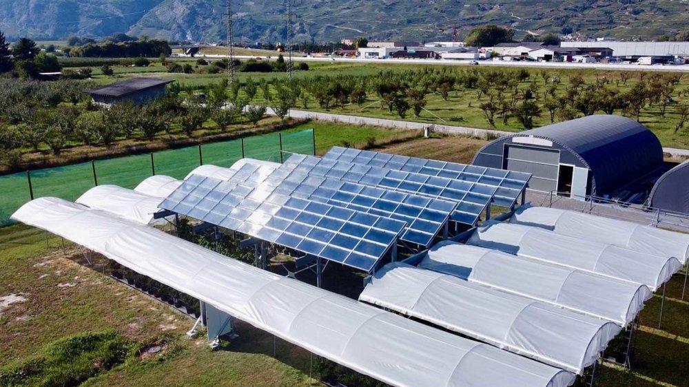 Les toits des serres d'Agroscope Conthey ont été recouverts de panneaux nouvelle génération. Avec de belles perspectives de développement.