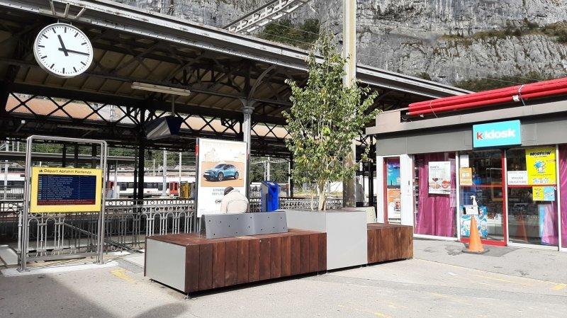 Le mobilier, agrémenté de végétation, doit permettre d'améliorer la qualité de l'espace public.