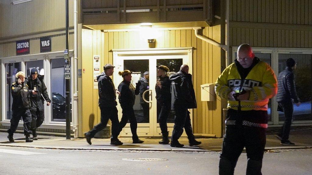 L'attaque s'est déroulée mercredi soir dans le sud-est de la Norvège.