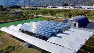 Une première mondiale agrivoltaïque à Conthey