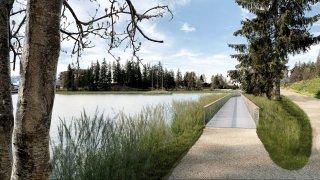 Crans-Montana: l'étang Grenon au cœur d'un vaste projet de renaturation