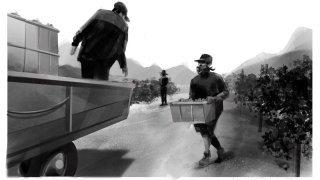 Vendanges 2021: 8300kg de raisin volé dans les vignes valaisannes