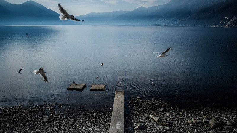 Tessin: une femme de 62 ans se noie dans le lac Majeur