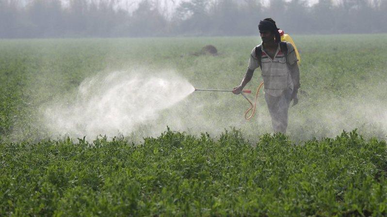 Europe: 122 tonnes de pesticides illégaux saisies