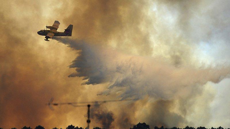 Portugal: deux violents feux de forêt font 10 blessés dans le centre du pays