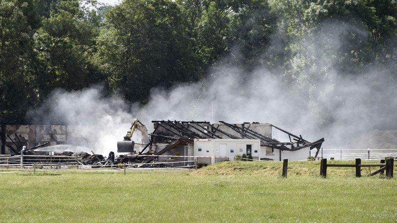 Le suspect des incendies d'Avenches, qui ont causé la mort de 24 chevaux et poneys, a été relaxé