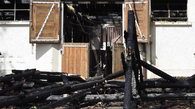 Avenches: un suspect a été interpellé après les incendies qui ont notamment ravagé l'Institut équestre national