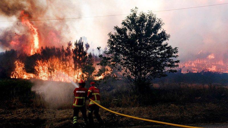 Portugal: les feux de forêts reprennent dans le centre du pays