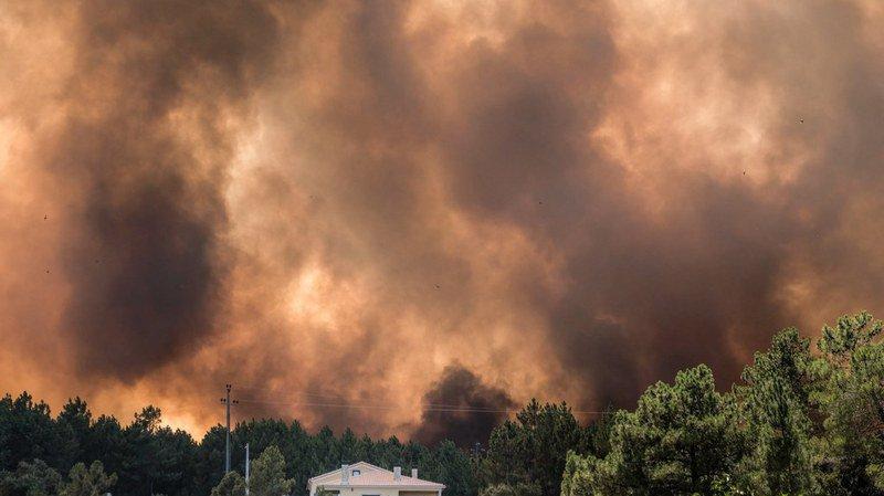 Portugal: les feux de forêt au centre du pays gagnent du terrain