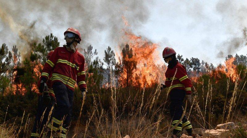 Portugal: les feux de forêt obligent à évacuer plusieurs villages