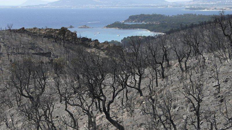 Incendies: le vent s'est calmé dans la nuit de jeudi à vendredi et la situation se stabilise dans le sud-est de la France