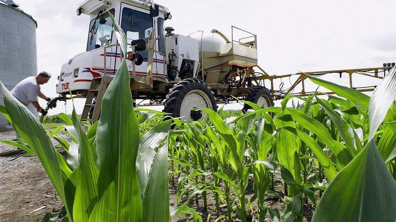 Un millier de biocides et 600 produits phytosanitaires figurent sur ces listes (illustration).