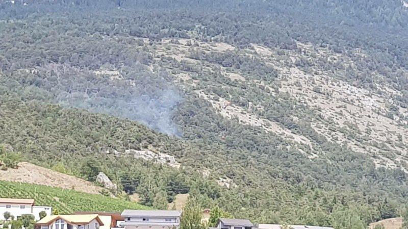Miège: un incendie a ravagé 600 mètres carrés de forêt