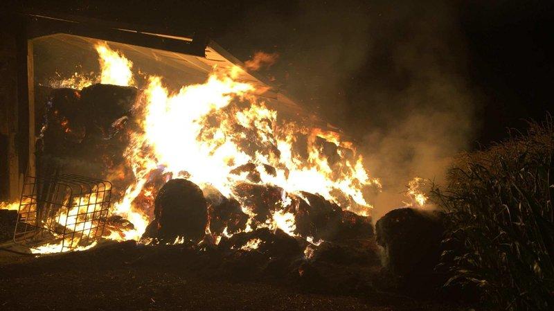 Vaud/Fribourg: près de 50 bovins ont péri dans des incendies de fermes dans La Broye