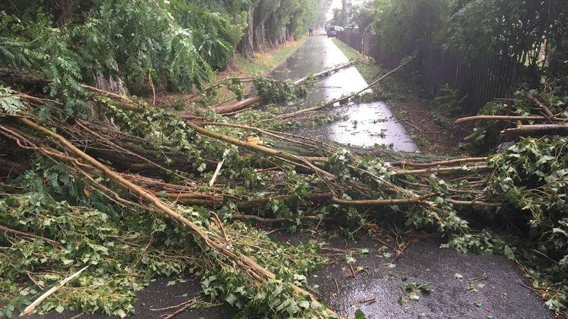 Le vent violent a fait chuter des arbres sur la rue Kleegärtenweg à Viège.