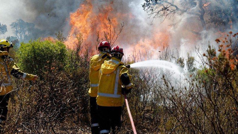 France: un feu de forêt embrase 150 hectares près d'Aubagne dans la région de Marseille