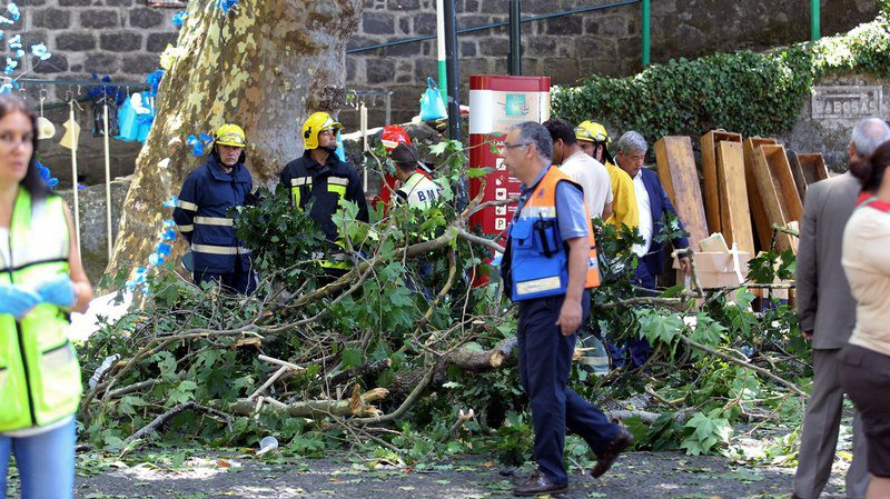 Portugal: la chute d'un arbre lors d'une fête religieuse fait treize morts et une cinquantaine de blessés à Madère