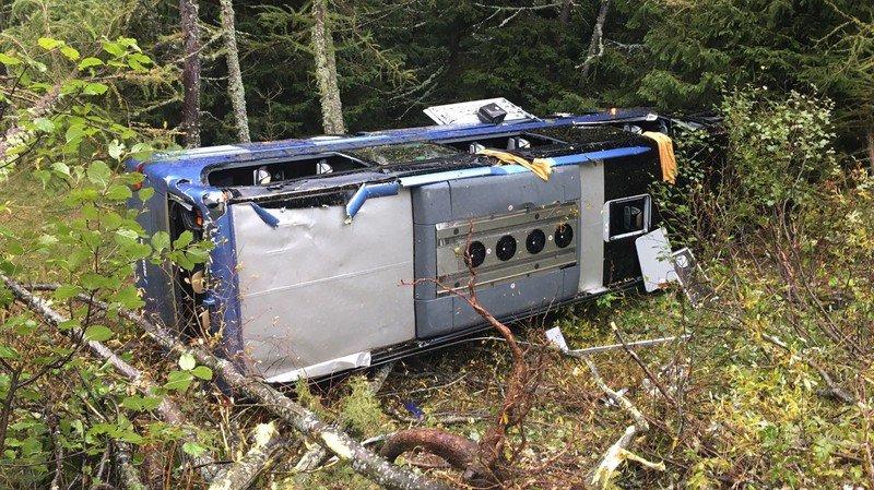 L'autocar s'est immobilisé dans la forêt après avoir dévalé le talus sur une vingtaine de mètres.