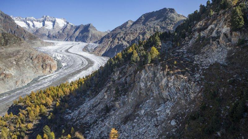 Rive gauche du glacier d'Aletsch: les vitesses de glissement diminuent