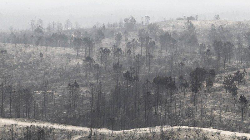 Portugal: le gouvernement promet 400 millions d'euros d'aide aux victimes des incendies