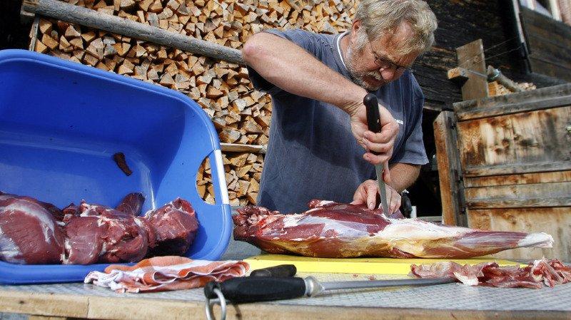 Alimentation: plus de deux tiers de la viande de chasse est importée de l'étranger