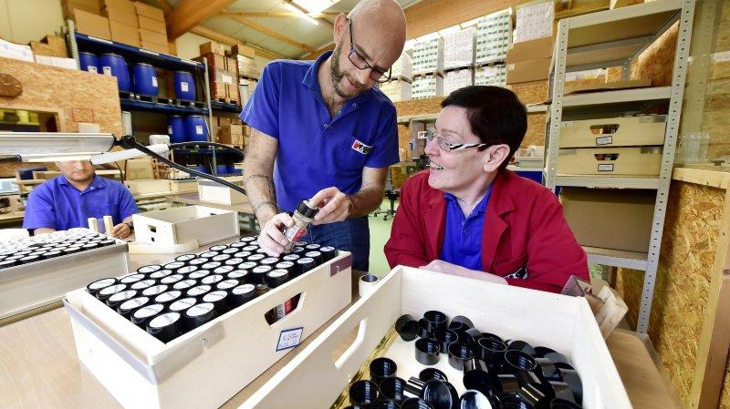 Trois entreprises du Valais font des intégrations collectives de personnes handicapées mentales de la FOVAHM (4/5)