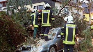 Tempête ''Herwart'': au moins sept morts en Europe centrale, forts vents en Suisse
