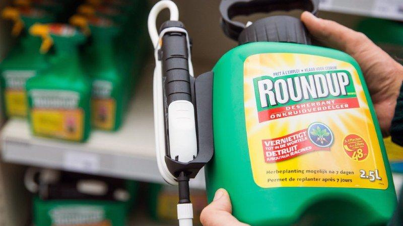 Pour l'office fédéral de la sécurité alimentaire, le glyphosate présent dans nos aliments ne présente aucun danger sanitaire (illustration).