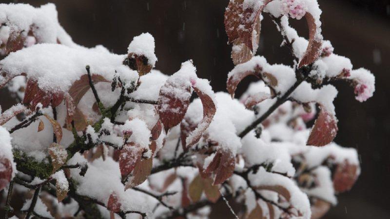 Valais: il est probable qu'il neige ce week-end