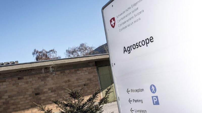 Le Grand Conseil valaisan plébiscite l'achat du centre de recherches Agroscope à Conhtey