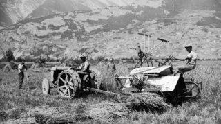 Constitution 1907: le plan de sauvetage de l'agriculture