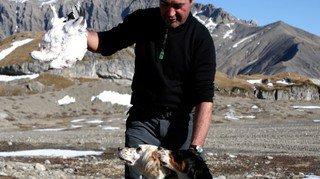 Unanimité autour de la modification de la loi sur la chasse
