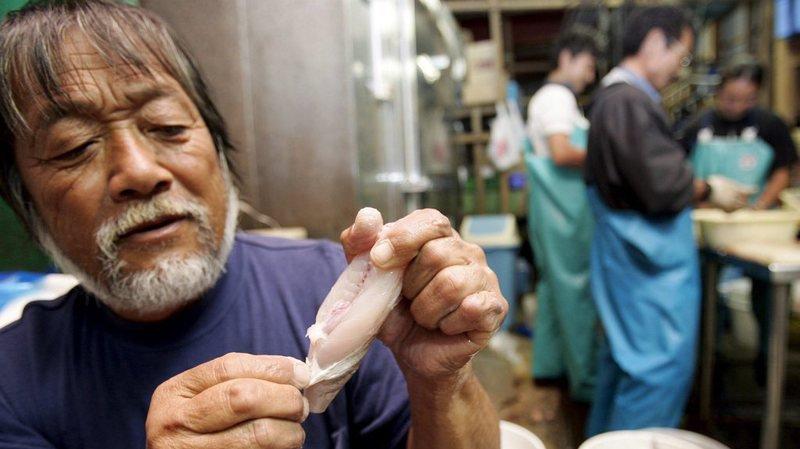 Japon: un supermarché vend par erreur cinq fugus sans en avoir extrait le foie qui contient une toxine mortelle