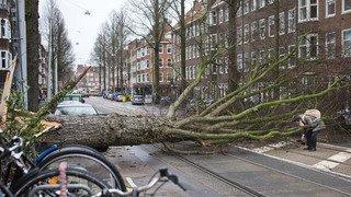 Intempéries: une violente tempête fait six morts et perturbe le trafic dans le nord de l'Europe