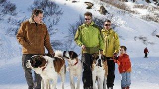 Les familles vont à la découverte  d'une race emblématique de chiens
