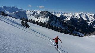 A la découverte de  la nature skis aux pieds