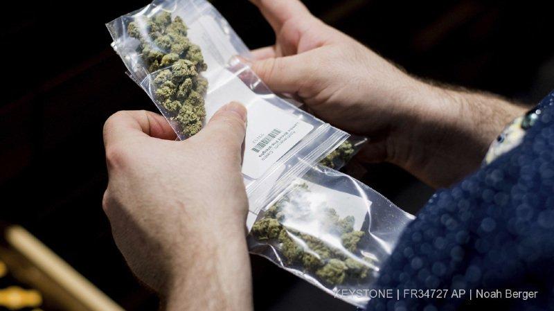 Lausanne: un dealer propose de la marijuana à deux inspecteurs de la brigade des stups
