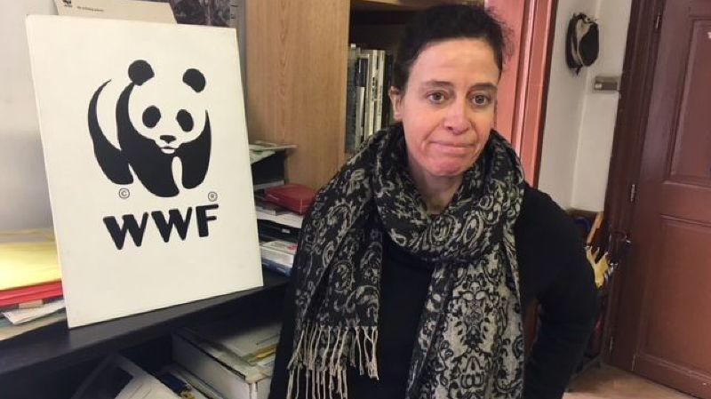 Ce vendredi, Marie-Thérèse Sangra a dit tout le mal que le WWF Valais pensait de la candidature olympique Sion 2026.