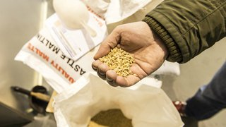 Valais: Hoppy People, désignée meilleure nouvelle brasserie de Suisse, nous a ouvert ses portes à Sierre
