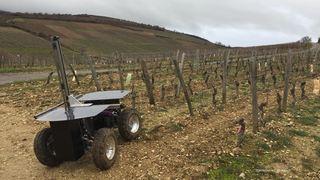Viticulture: un robot autonome qui taille les vignes reçoit le premier prix du salon Agrovina