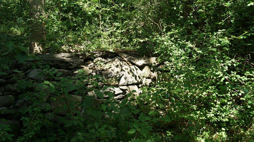 Plusieurs murgères se trouvent cachées par la végétation.