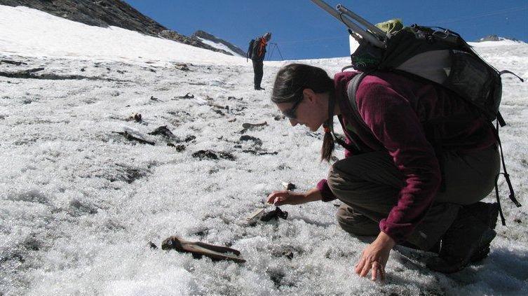 Souvenir du Col du Théodule, l'archéozoologue Sophie Providoli analyse une carcasse de mulet.