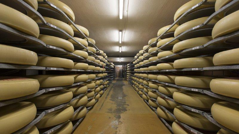 Les produits traditionnels, comme le Gruyère, le fromage à raclette, l'Emmentaler, l'Appenzeller, le Tilsiter et le Vacherin fribourgeois, sont particulièrement prisés. (illustration)